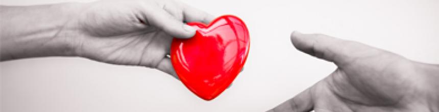 O que você precisa saber para sobre doação de órgãos